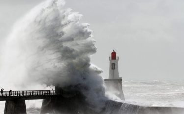 https://foragerfunds.com/news/gale-force-tail-wind-for-the-index-unaware/