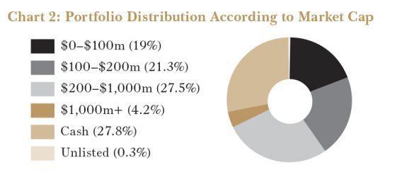 FASF Portfolio Distribution by Market Cap