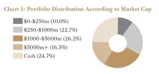 Chart of FISF Portfolio Distribution According to Market Cap