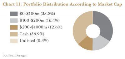 Portfolio Market Cap Distribution