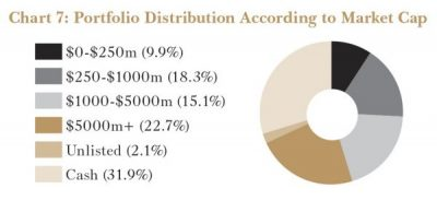 Portfolio Distribution According to Market Cap