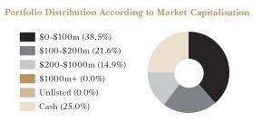 Portfolio Distribution According to Market Capitalisation